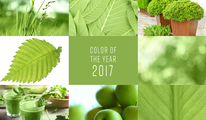 Greenery, el color de moda del 2017